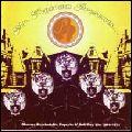V.A. (PSYCHEDELIC ROCK) / MR. TOYTOWN PRESENTS...OBSCURE PSYCHEDELIC, POPSYKE & SOFT-POP 45S, 1969-1974