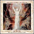 RAY DAVIES レイ・デイヴィス / キンクス・コーラル・コレクション