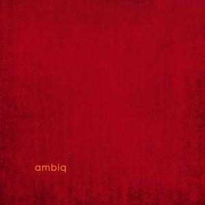AMBIQ / AMBIQ