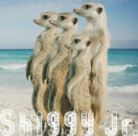 Shiggy Jr. / サマータイムラブ(初回限定盤)