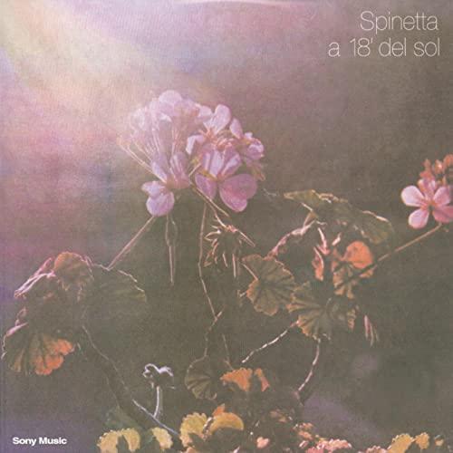 SPINETTA / スピネッタ / A 18'DEL SOL