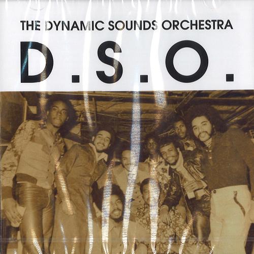 DYNAMIC SOUNDS ORCHESTRA / ダイナミック・サウンズ・オーケストラ / D.S.O