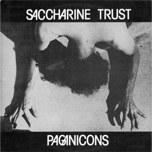 "SACCHARINE TRUST / PAGANICONS (12"")"