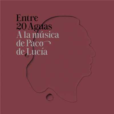 V.A. (ENTRE 20 AGUAS) / オムニバス / ENTRE 20 AGUAS - A LA MUSICA DE PACO DE LUCIA