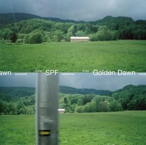 GRAPEVINE / グレイプバイン / SPF / Golden Dawn