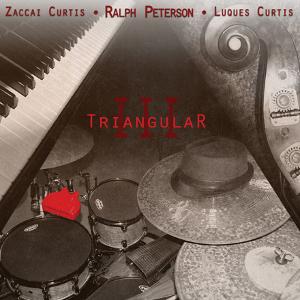 RALPH PETERSON / ラルフ・ピーターソン / Triangular III