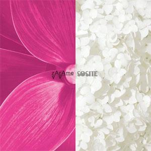 zArAme / SOSITE  / split