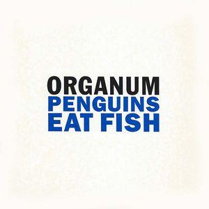 ORGANUM : DAVID JACKMAN / オルガナム/デヴィッド・ジャックマン / PENGUINS EAT FISH/LITTLE DARK WING