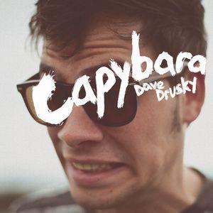 CAPYBARA / DAVE DRUSKY (LP)