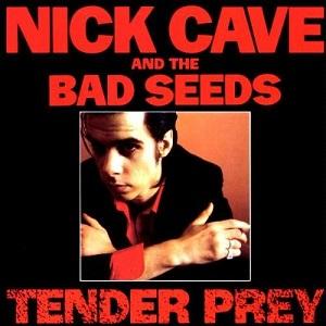 NICK CAVE & THE BAD SEEDS / ニック・ケイヴ&ザ・バッド・シーズ / TENDER PREY (LP)