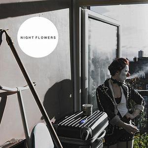 NIGHT FLOWERS / ナイト・フラワーズ / NIGHT FLOWERS / ナイト・フラワーズ