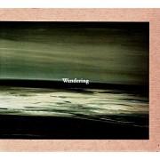V.A.(MR.CLOUDY,MARTIN SCHULTE,SHINSUKE MATSUMOTO...) / Wandering Compilation