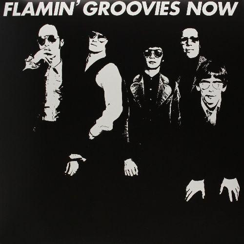 FLAMIN' GROOVIES / フレイミングルーヴィーズ / FLAMIN' GROOVIES NOW (180G LP)