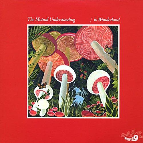 MUTUAL UNDERSTANDING / ミューチュアル・アンダースタンディング / IN WONDERLAND (LP)