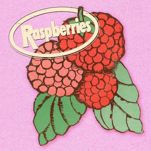 RASPBERRIES / ラズベリーズ / CLASSIC ALBUM BOX SET (4CD)