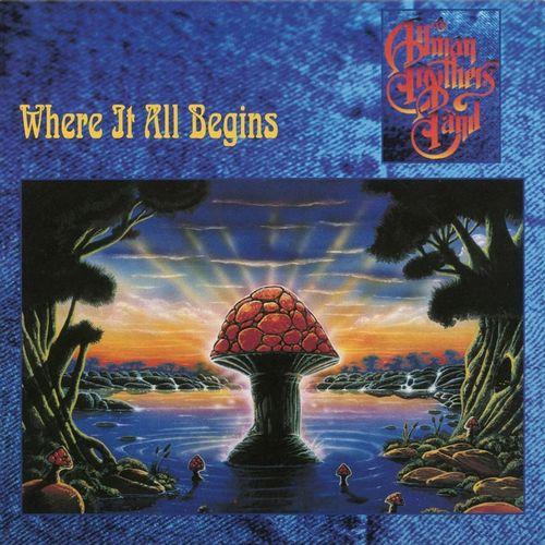 ALLMAN BROTHERS BAND / オールマン・ブラザーズ・バンド / WHERE IT ALL BEGINS (180G LP)