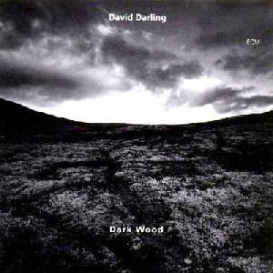 DAVID DARLING / デヴィッド・ダ...