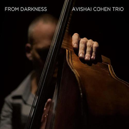 AVISHAI COHEN TRIO / From Darkness