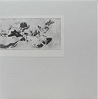 ELODIE (ANDREW CHALK+TIMO VAN LUIJK) / GRISAILLES (LP)